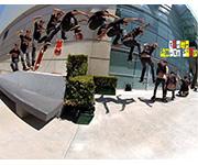 Trama Skate Shop