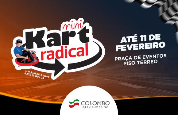 Mini Kart Radical